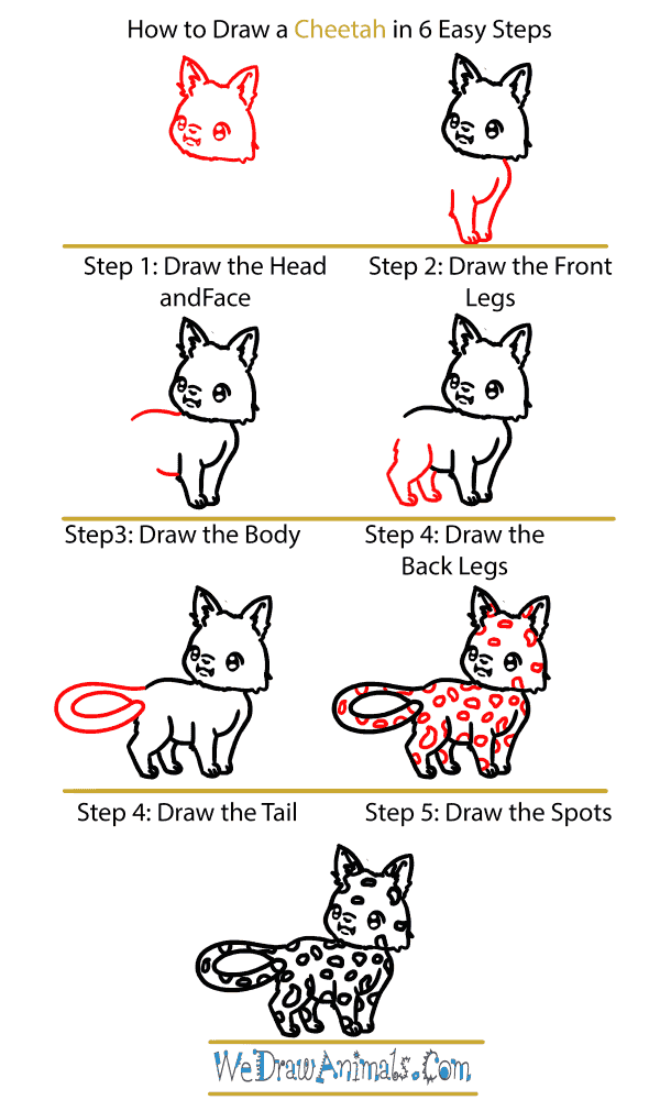 How to Draw a Baby Cheetah - Step-by-Step Tutorial