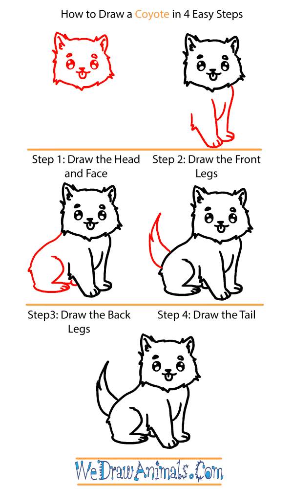 How to Draw a Baby Coyote - Step-by-Step Tutorial