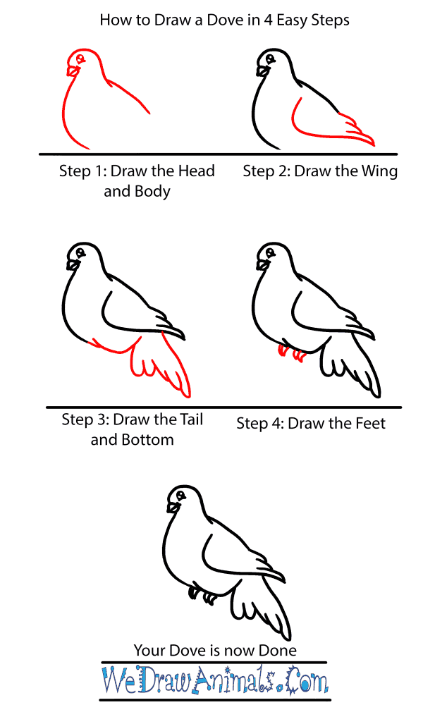 How to Draw a Baby Dove - Step-by-Step Tutorial