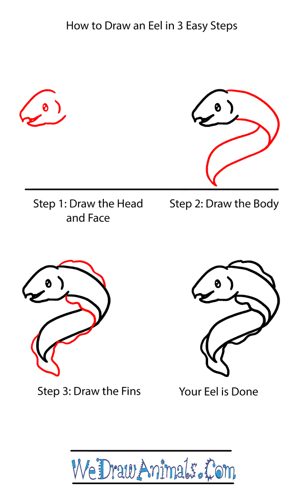 How to Draw a Baby Eel - Step-by-Step Tutorial