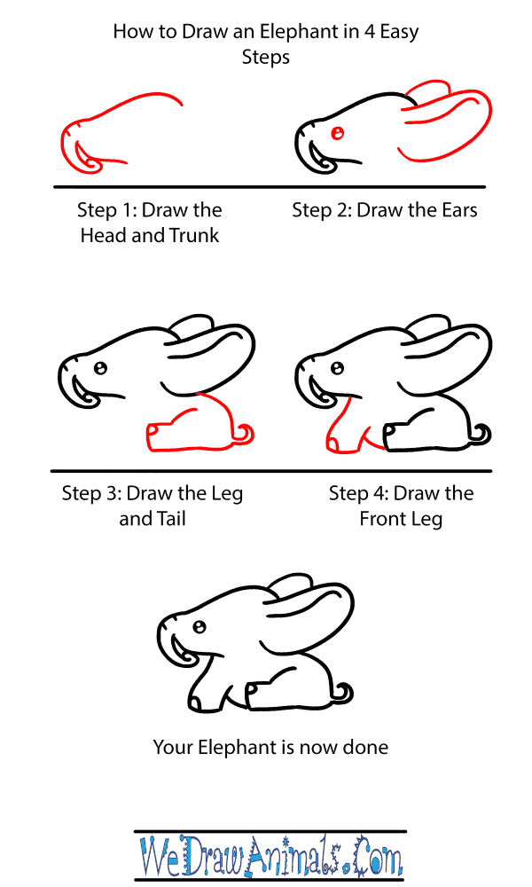 How to Draw a Baby Elephant - Step-by-Step Tutorial
