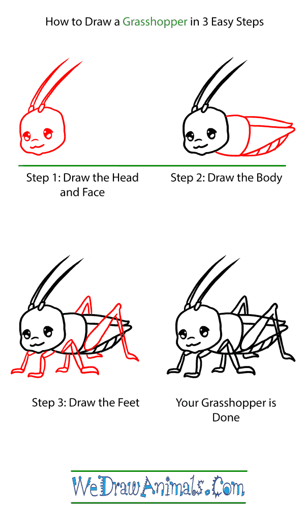 How to Draw a Baby Grasshopper - Step-by-Step Tutorial