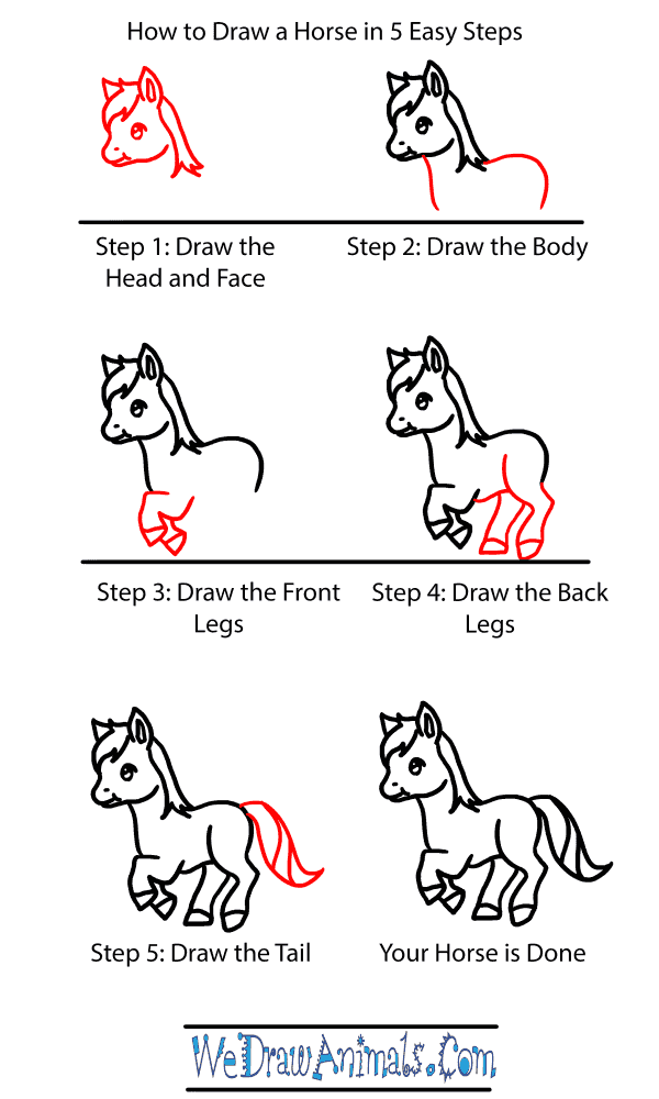 How to Draw a Baby Horse - Step-by-Step Tutorial