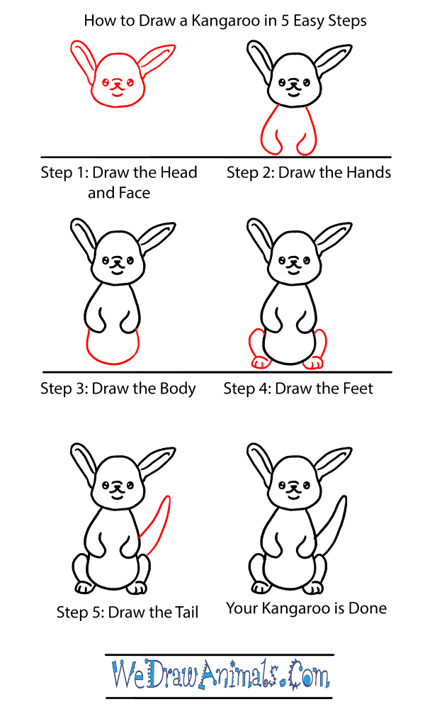 How to Draw a Baby Kangaroo - Step-by-Step Tutorial