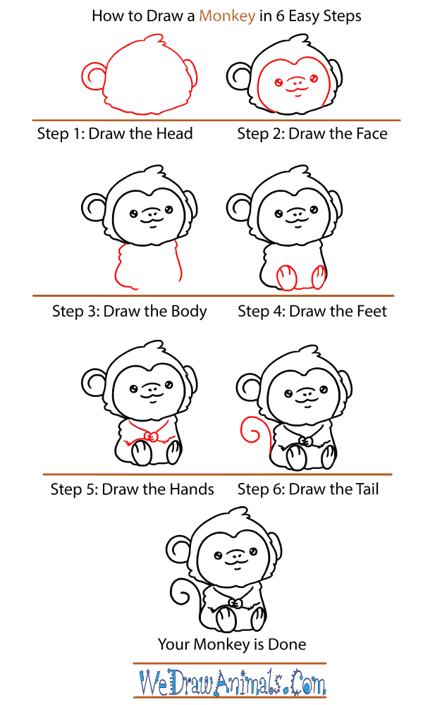 How to Draw a Baby Monkey - Step-by-Step Tutorial