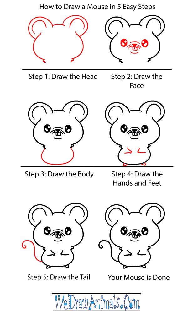 How to Draw a Baby Mouse - Step-by-Step Tutorial
