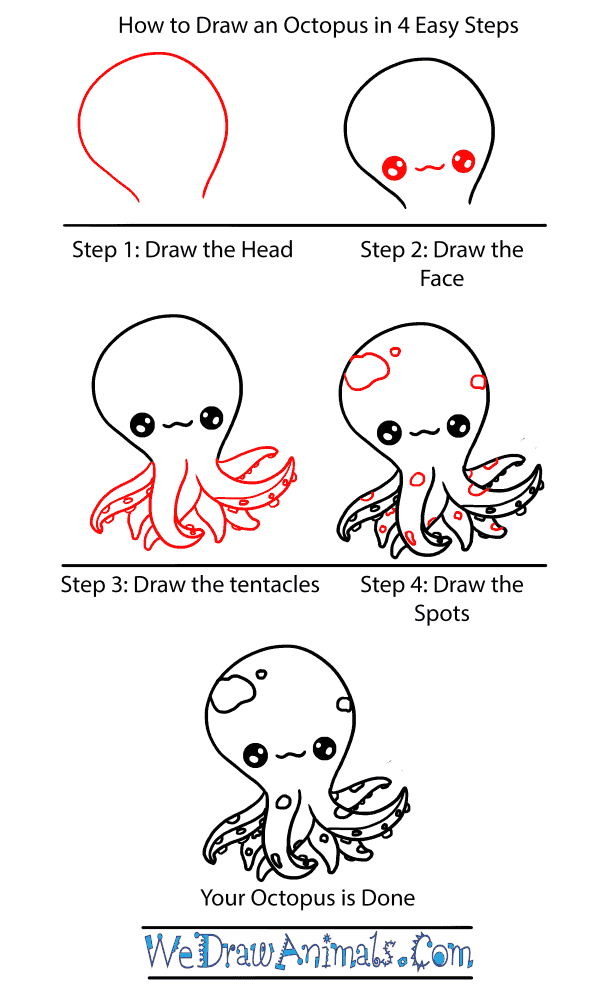 How to Draw a Baby Octopus - Step-by-Step Tutorial