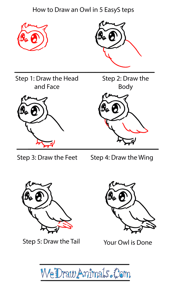 How to Draw a Baby Owl - Step-by-Step Tutorial
