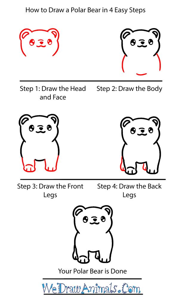 How to Draw a Baby Polar Bear - Step-by-Step Tutorial