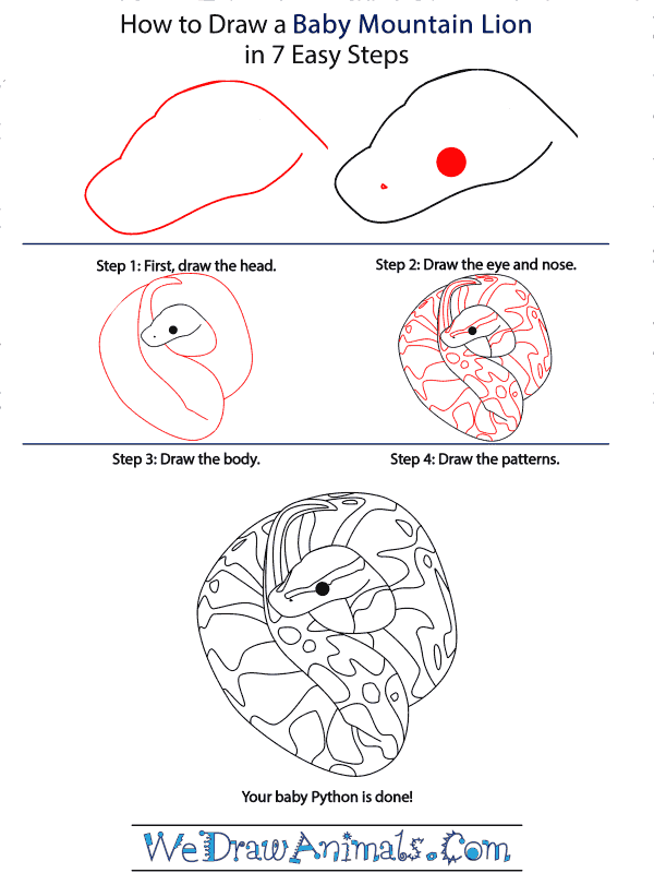 How to Draw a Baby Python - Step-by-Step Tutorial