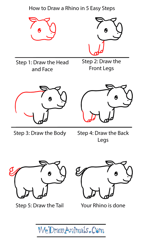How to Draw a Baby Rhino - Step-by-Step Tutorial