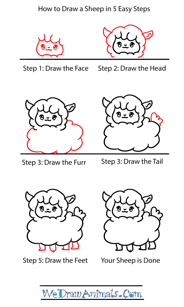 How to Draw a Baby Sheep - Step-by-Step Tutorial