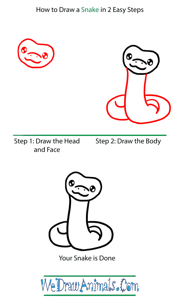 How to Draw a Baby Snake - Step-by-Step Tutorial
