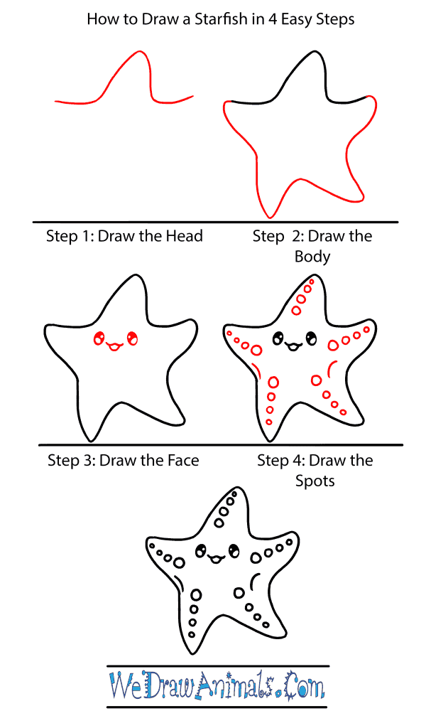 How to Draw a Baby Starfish - Step-by-Step Tutorial