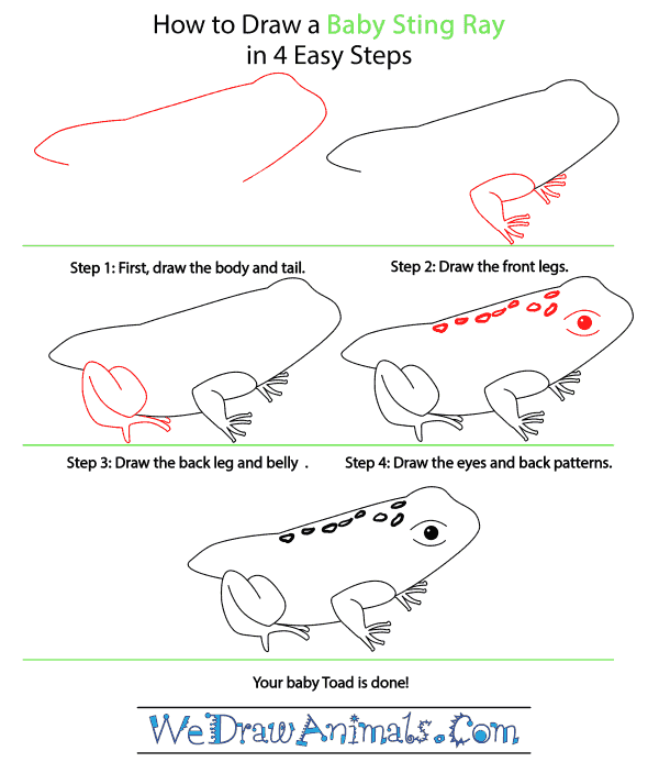 How to Draw a Baby Toad - Step-by-Step Tutorial