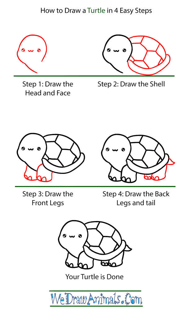 How to Draw a Baby Turtle - Step-by-Step Tutorial