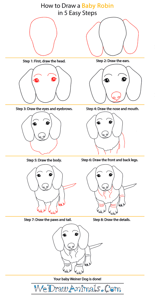 How to Draw a Baby Wiener Dog - Step-by-Step Tutorial