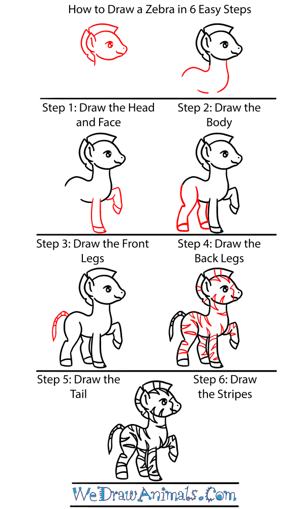 How to Draw a Baby Zebra - Step-by-Step Tutorial