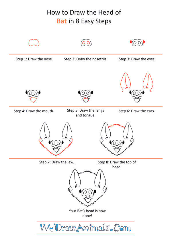 How to Draw a Bat Face - Step-by-Step Tutorial