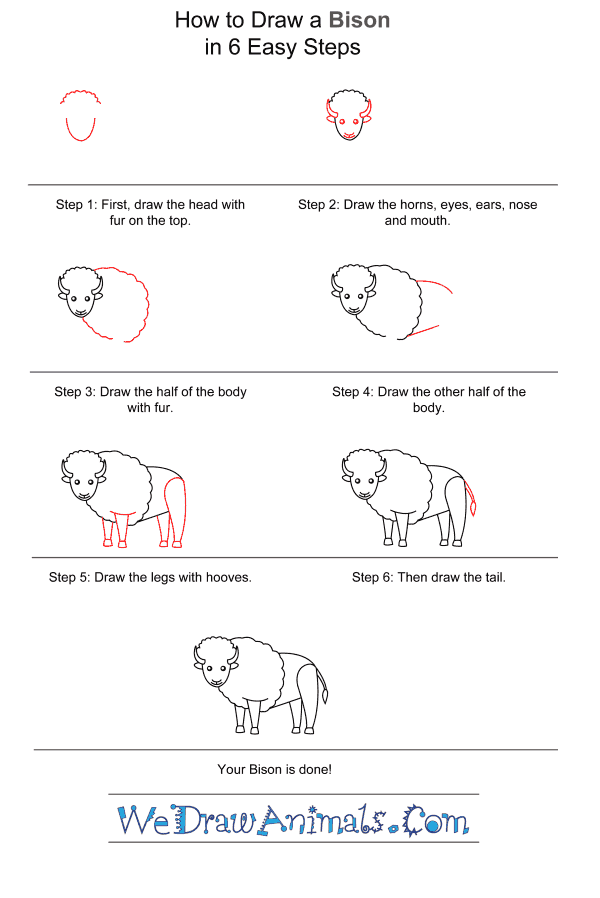 How to Draw a Bison for Kids - Step-by-Step Tutorial