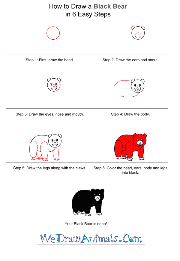 How to Draw a Black Bear for Kids - Step-by-Step Tutorial