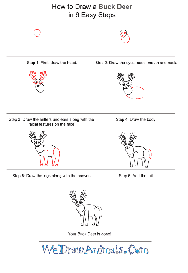 How to Draw a Buck Deer for Kids - Step-by-Step Tutorial