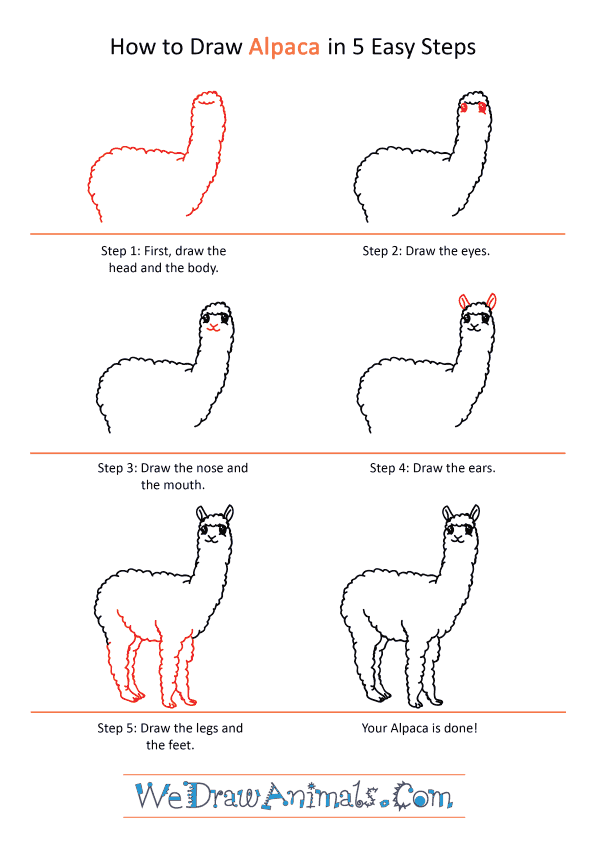 How to Draw a Cartoon Alpaca - Step-by-Step Tutorial