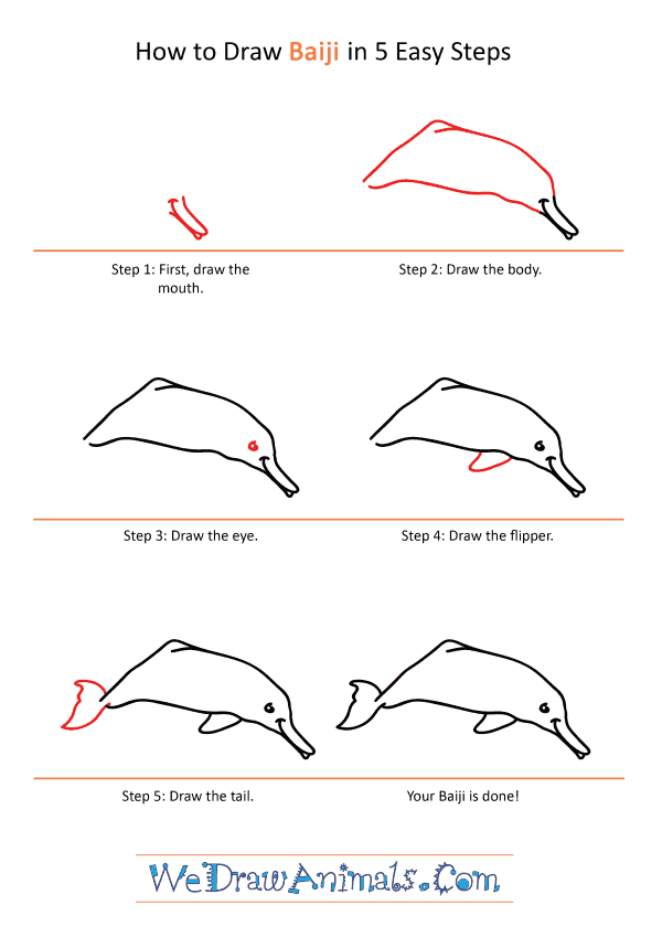How to Draw a Cartoon Baiji - Step-by-Step Tutorial