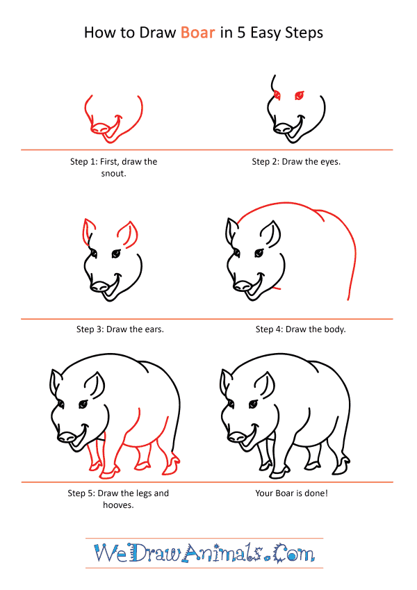 How to Draw a Cartoon Boar - Step-by-Step Tutorial