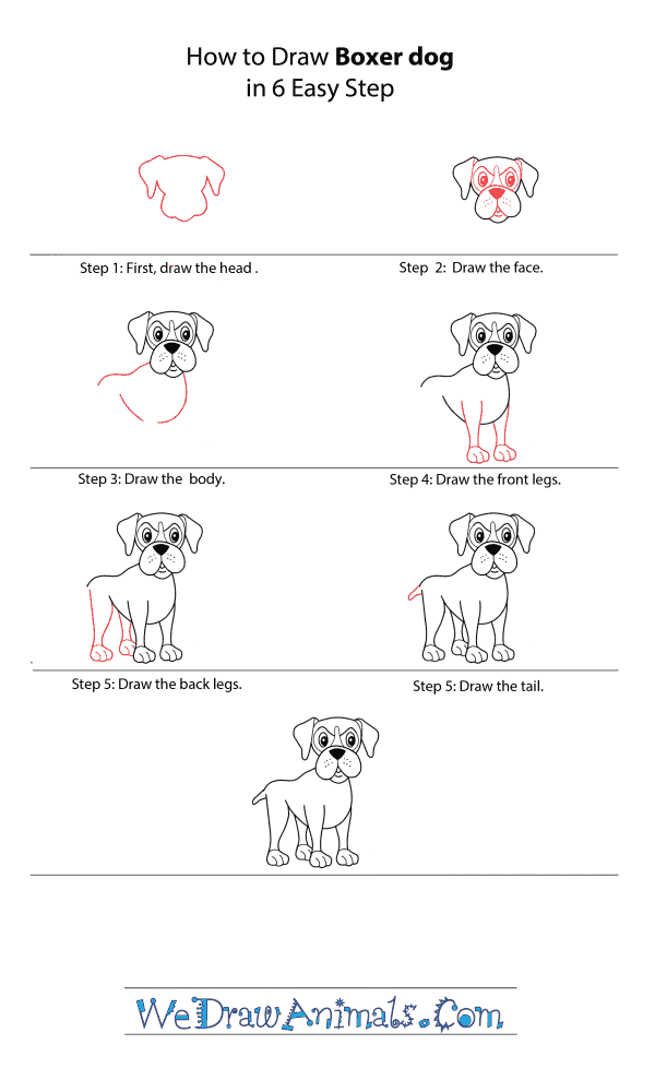 How to Draw a Cartoon Boxer Dog - Step-by-Step Tutorial