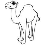 How to Draw a Camel Face
