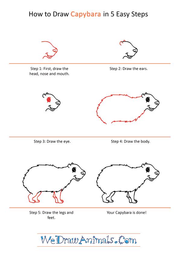 How to Draw a Cartoon Capybara - Step-by-Step Tutorial