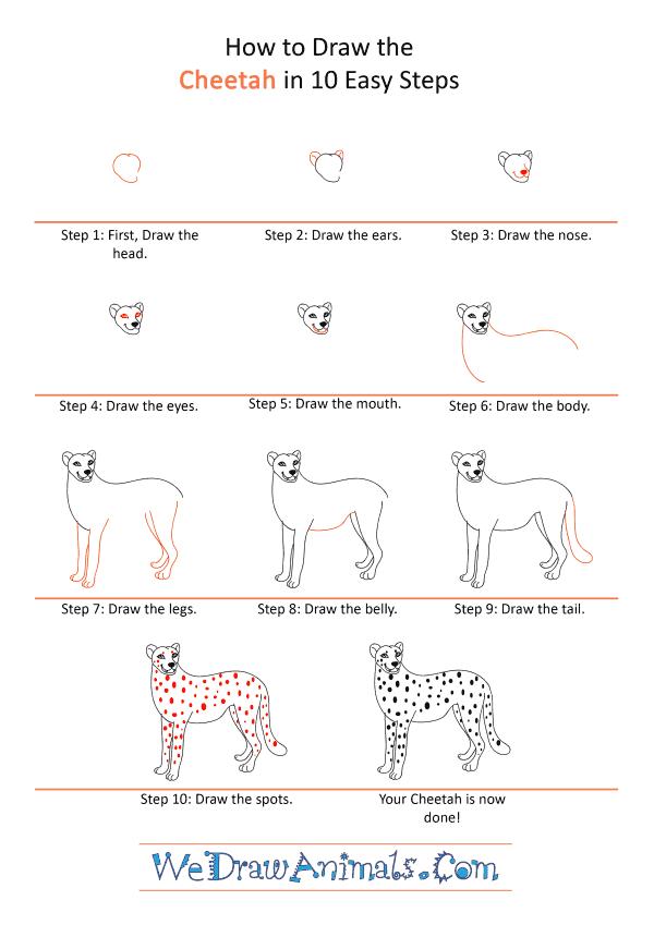 How to Draw a Cartoon Cheetah - Step-by-Step Tutorial