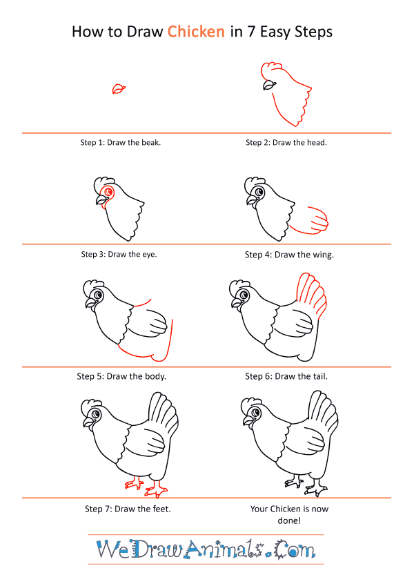How to Draw a Cartoon Chicken - Step-by-Step Tutorial