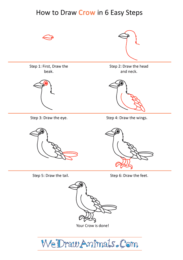 How to Draw a Cartoon Crow - Step-by-Step Tutorial