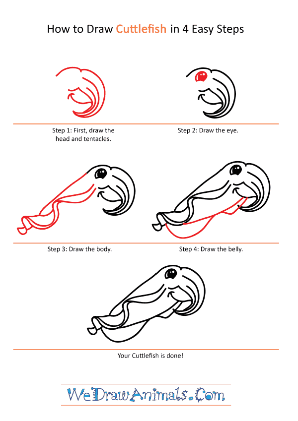 How to Draw a Cartoon Cuttlefish - Step-by-Step Tutorial