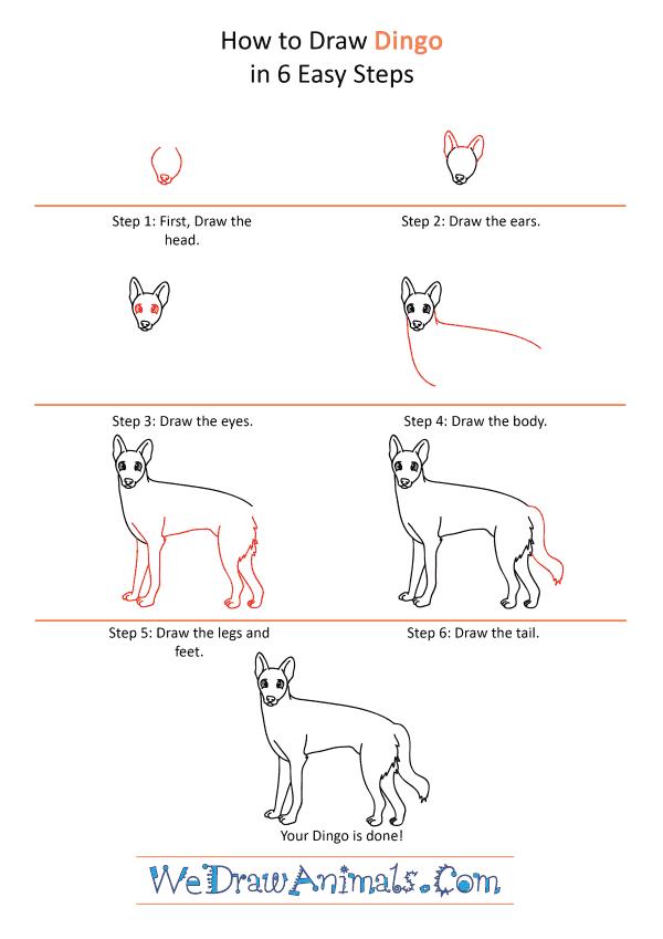 How to Draw a Cartoon Dingo - Step-by-Step Tutorial