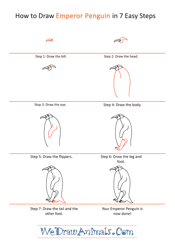 How to Draw a Cartoon Emperor Penguin - Step-by-Step Tutorial