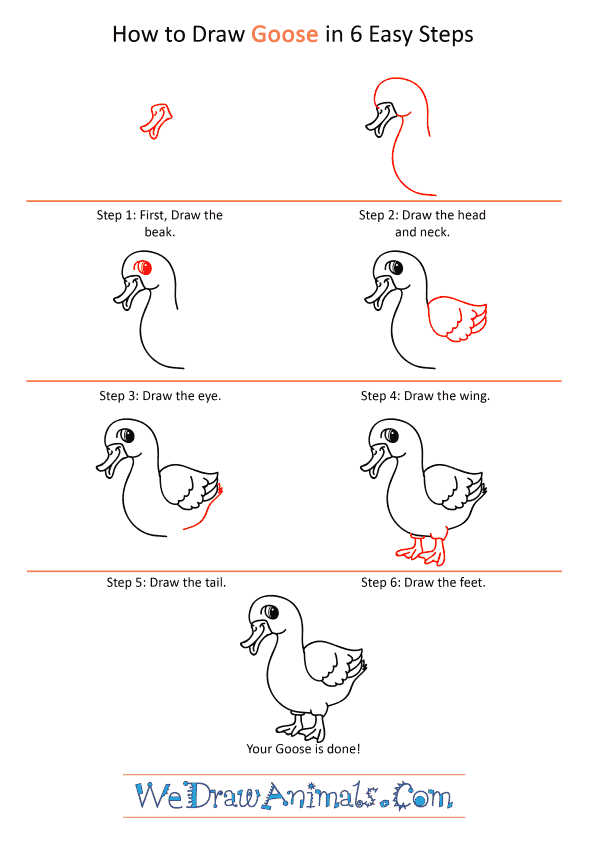 How to Draw a Cartoon Goose - Step-by-Step Tutorial