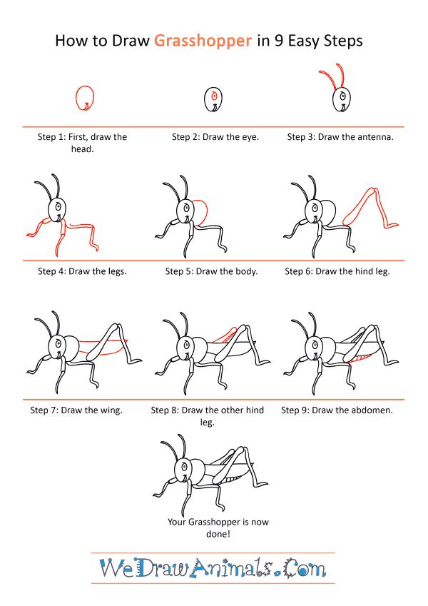 How to Draw a Cartoon Grasshopper - Step-by-Step Tutorial