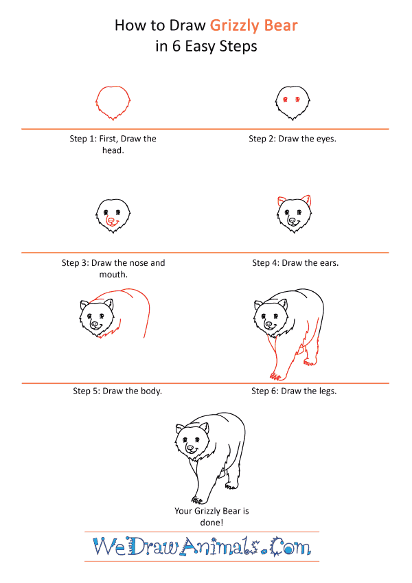 How to Draw a Cartoon Grizzly Bear - Step-by-Step Tutorial
