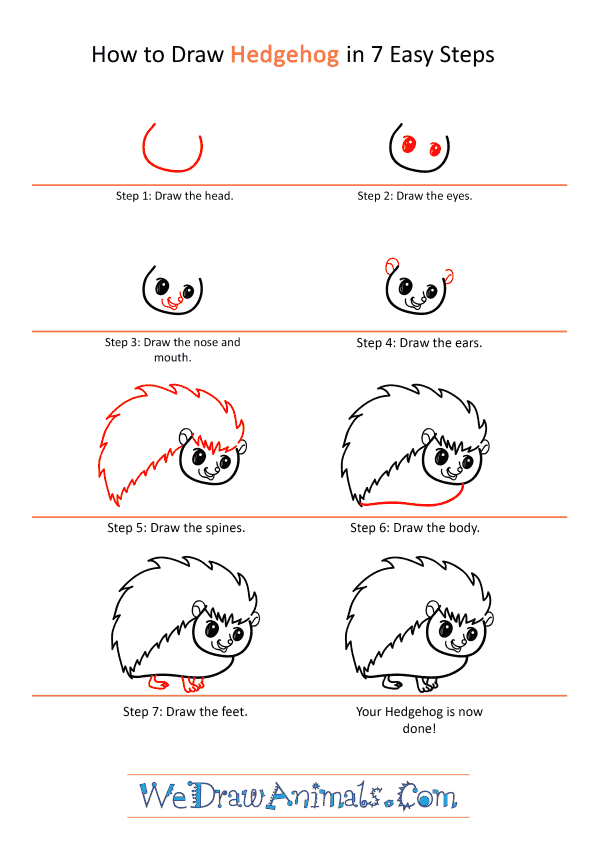 How to Draw a Cartoon Hedgehog - Step-by-Step Tutorial
