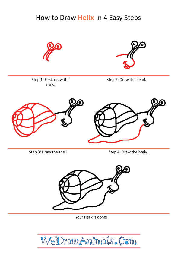 How to Draw a Cartoon Helix - Step-by-Step Tutorial