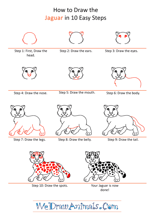 How to Draw a Cartoon Jaguar - Step-by-Step Tutorial