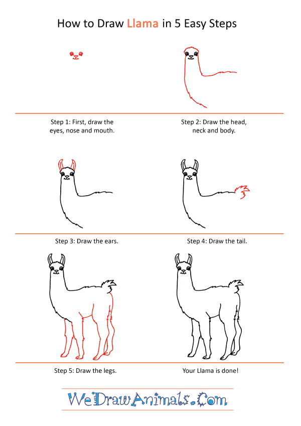 How to Draw a Cartoon Llama - Step-by-Step Tutorial