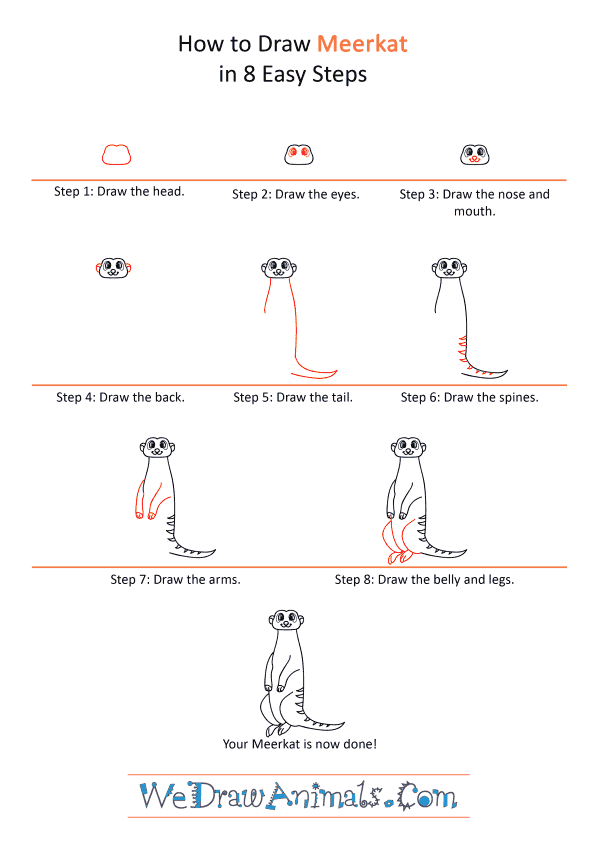 How to Draw a Cartoon Meerkat - Step-by-Step Tutorial