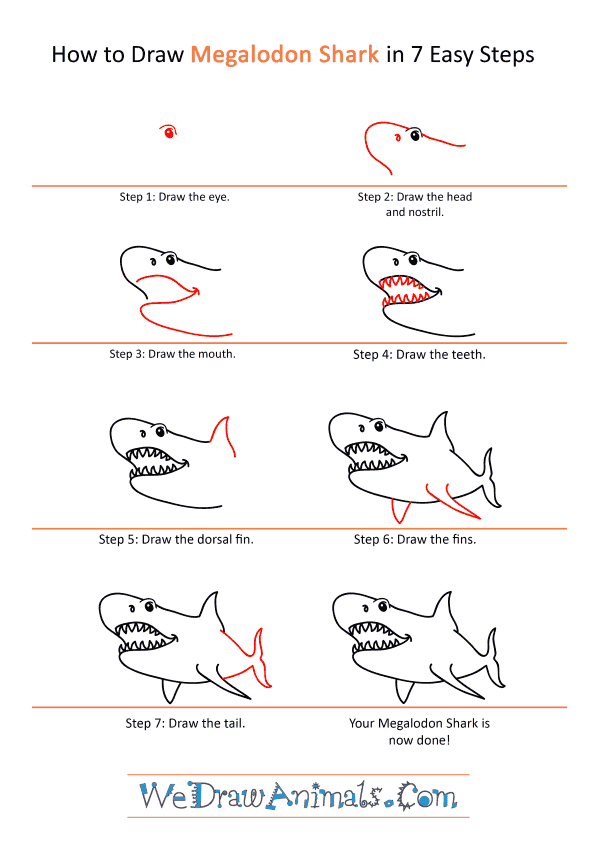 How to Draw a Cartoon Megalodon Shark - Step-by-Step Tutorial