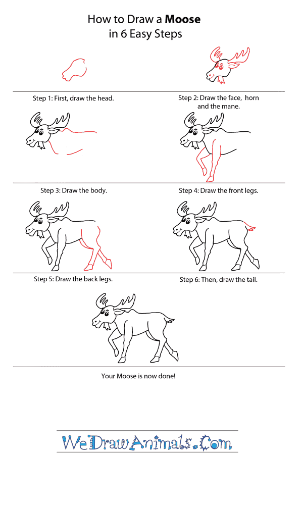 How to Draw a Cartoon Moose - Step-by-Step Tutorial