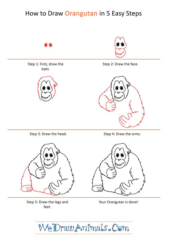How to Draw a Cartoon Orangutan - Step-by-Step Tutorial