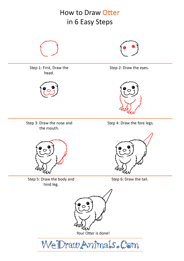 How to Draw a Cartoon Otter - Step-by-Step Tutorial